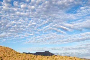 Desert Cirrus Clouds, photograph by Susan Swain